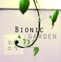 Flux Factory is proud to present Bionic Garden, an exhibition that unveils how humans have adapted to grow plants in the most unlikely of ways and places.