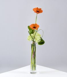 Eva #Flowers-A modern table vase arrangement consisting of gerbera, carnations and foliage.    Standard  £14.99    Grand  £ 22.99