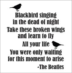 Ideas black bird lyrics tattoo beatles songs for 2019 Beatles Songs, Beatles Quotes, Music Quotes, Music Lyrics, The Beatles, Beatles Art, Blackbird Singing, Long Distance, Music