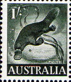 """Issued of September Duck-billed Platypus """"Ornithorhynchus anatinus"""" Postage Stamp Design, Postage Stamps, Australian Animals, Australian Party, Duck Billed Platypus, Stamp Values, Australian Painting, Postage Stamp Collection, Commemorative Stamps"""