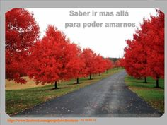#Pasapalabra 18-09-14 * Saber ir más allá para poder amarnos*