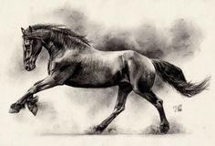 Image from http://fc02.deviantart.net/fs70/i/2012/123/4/2/friesian_horse_ii_by_maniaadun-d4ydoyv.jpg.