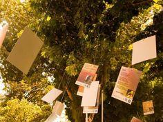 Decoração de árvores e performances com poemas marcam 'Celebração da Poesia'
