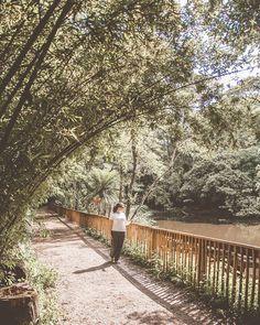 """1,145 curtidas, 90 comentários - Travel Blog by Gabi 💙 Rafa (@acumulandoviagens) no Instagram: """"{5/10} Sampa tem muitos parques e hoje vou falar sobre o meu favorito, o Parque Burle Marx. 💚 . O…"""""""