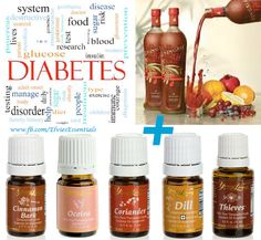I started using Ningxia Red three times daily, adding oils such as Cinnamon Bark, Ocotea, Grapefruit, or Slique Essence to the Ningxia Red.    After several weeks, I decreased my dose of Ningxia Red to one ounce twice daily. Without any other changes, I was able to wean myself off of two of my three #diabetes medications. I felt much better knowing that I replaced synthetic medications with natural products! ~ Kim Lawrence #youngliving #essentialoils
