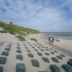The beach of Texel