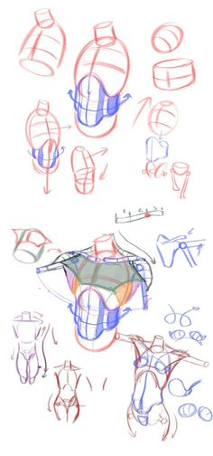 Exceptional Drawing The Human Figure Ideas. Staggering Drawing The Human Figure Ideas. Human Figure Drawing, Figure Drawing Reference, Anatomy Reference, Body Anatomy, Anatomy Art, Anatomy Poses, Anatomy Study, Drawing Tips, Drawing Tutorials