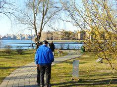Socrates Sculpture Park, Queens  NY, USA - 2012