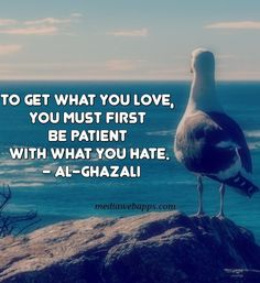 To get what you love, you must first be patient with what you hate. - Al-Ghazali * Who will stop the United States of Israel, stop war in Mideast, stop its police states in North America * Rumi Quotes, Spiritual Quotes, Wisdom Quotes, Life Quotes, Qoutes, Motivational Quotes, Quran Quotes, Hindi Quotes, Alexander The Great Quotes
