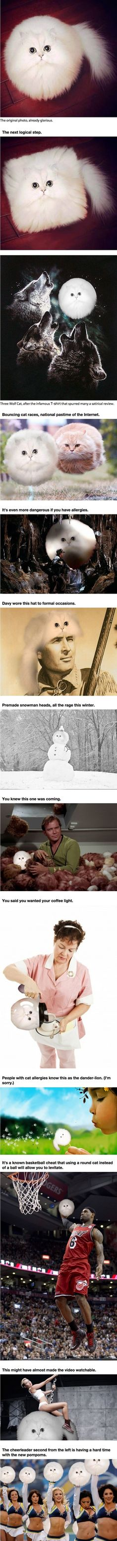 Hilarious photo edits