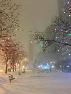 NY in the snow: fabulous! ❤