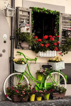 Bicycle by Mehmet Kerem Davrandı #bicycledecor #flowers
