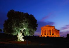 Valley of the Temples - Agrigento - Sicily #agrigento