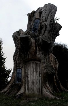 Tree house. Stump house? Very very large stump house? Either way. Cool.