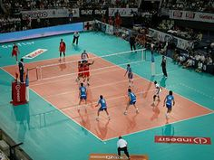 I would like to be an Olympian court volleyball player when I am older.