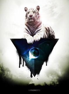illuminati #piel #shoppiel #inspiration