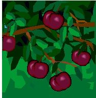 ABC's of Healthy Foods: Fruits: P = Plum: prevents tiredness and cramps.