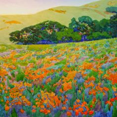 "Robin Purcell  ""Late Bloomers"" 14 x 14 . Got the last of the poppies on Mt Diablo before the heat hit this week."