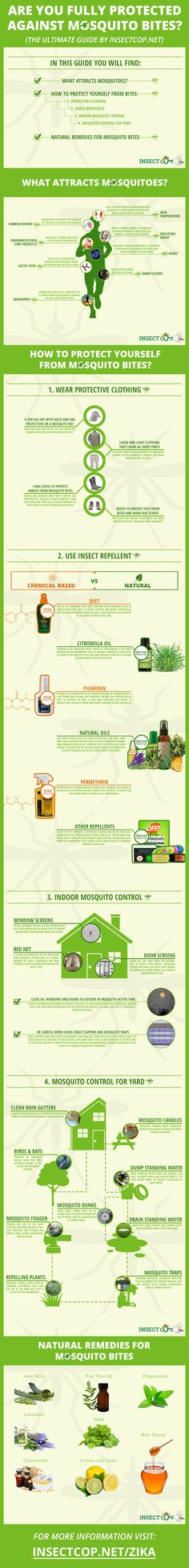 The social Super Bowl 2013 – the winners and losers [infographic] Best Mosquito Repellent, Mosquito Spray, Insect Repellent, Super Bowl, Mosquito Control, Mosquito Protection, Pest Control, Bug Control, Internet Marketing