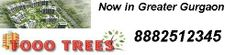 Find  Geoworks 1000 Trees New Residential Projects, Geoworks 1000 Trees Builders New Residential Properties in Gurgaon, New Launches of Geoworks 1000 Trees in Gurgaon and Geoworks 1000 Trees Builders Upcoming Residential Projects | Call +91-8882512345 for Geoworks 1000 Trees Projects