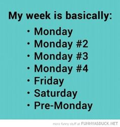 funny-pictures-my-week-basically.jpg (480×508)