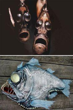 Amazing Sea Creatures #Hatchetfish