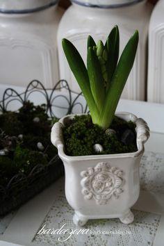 Még a moha is virágzik... a kedvenc Wass Albert idézetem és némi egyperces húsvéti dekor...- PURE DESIGN