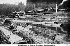 Log Dump -----Oregon Coast