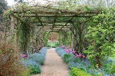 beautiful arbor walkway
