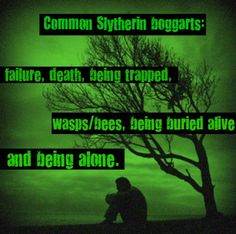 I don't agree with all of these (wasps/bees? Being buried alive? I mean I do fear these things, but how is that related to my being a Slytherin? Where'd that come from?), but definitely the failure, death, and being alone (though I think we're rather solitary).