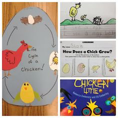 Life Cycle of a Chicken: Tippy-Toe, Chick, GO!