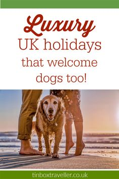 Top notch UK holidays for families with dogs, from luxury self-catering cottages to lodges, apartments and hotels. Here are some of the best places to stay with your four-legged friend and other pets Day Trips Uk, Weekend Trips, Dog Travel, Family Travel, Travel Tips, Travel Uk, Travel Ideas, Travel Destinations, Best Uk Holidays