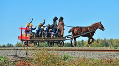 Paul Cyr Photography: Amish in Maine