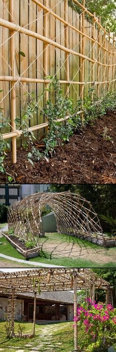 The Craft Art of Bamboo-have plenty of this nearby! - Green Secrets