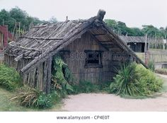 View top-quality stock photos of Maori Hut In A Village Near Rotorua North Island New Zealand. Find premium, high-resolution stock photography at Getty Images. North Island New Zealand, Stock Photos, Post Apocalyptic, House Styles, Perspective, Aesthetics, Photography, Image, Drawing