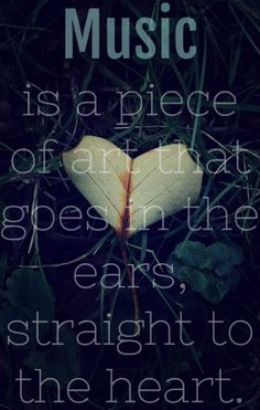 Music is a piece of art that goes in the ears, straight to the heart quote!