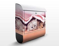 Poštová schránka Mačiatka