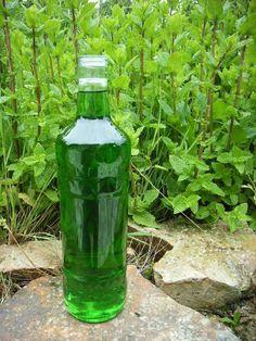 Pour une fois, c'est du sans-alcool ! ;) Pour deux litres de sirop :1 grande passoire pleine de menthe fraichement cueillie (avec votre...