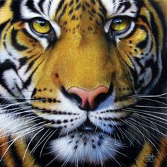 Golden Tiger Face SunsOut 1000 Piece Jigsaw Puzzle by Artist Jurek, $16.50