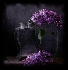 Jar with Purple Flowers