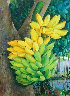 Donald Jusko. Cacho de bananas