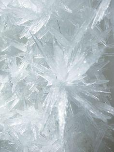 Tokujin Yoshioka/Crystallized Painting