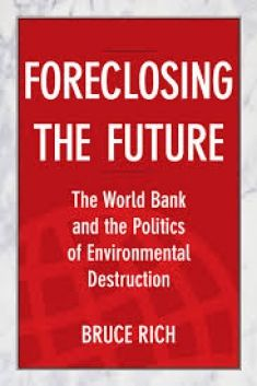 """Bruce Rich calls for a reorientation of the World Bank's priorities to reward the quality of outcomes rather than the quantity of lending. This, he argues, would allow the institution to become a """"beacon"""" of good social and environmental practice, for others to follow."""