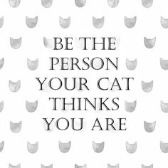 Be the person your #cat thinks you are. #bemantra #quote #citation