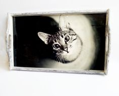 Black and white wooden tray with cat photo by MKedraDecoupage, $50.00