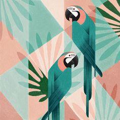 Geometric birds (Procreate-iPad Pro) on Pantone Canvas Gallery