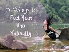 Are you wanting to save your head from incredibly dry hair but tired of chemical products? Here are some at-home solutions to feed your hair naturally.