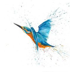 british kingfisher - Google Search