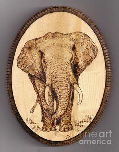 fine art pyrography | Elephant Pyrography