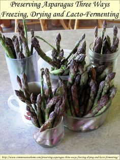 Preserving Asparagus Three Ways - Freezing, Drying and Lacto-Fermenting @ Common Sense Homesteading